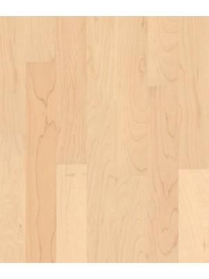 Weitzer Parkett WP 450 2-Schicht 1-Stab Fertigparkett zur vollflächigen Verklebung, ProStrong Ahorn canadisch ruhig Planke 500 x 65 mm, 11 mm Stärke, 2,34 m² pro Paket, Nutzschicht 3,6 mm günstig Parkettboden online kaufen