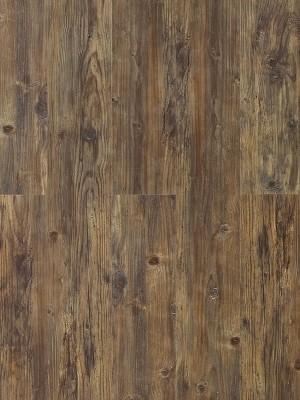 Wicanders Hydrocork Clic Vinyl-Designboden mit Korkdämmung Century Fawn Pine Planke 1225 x 145 mm, 6 mm Stärke, 1,599 m² pro Paket, NS: 0,55 mm, Klick-Vinyl Bodenbelag jetzt noch günstiger mit persönlichem Angebot - jetzt zusammen mit Muster anfragen ab 20 m², HstNr: B5P7001 *** 1. Wahl Qualität! Lieferung ab € 600,- Warenwert ***
