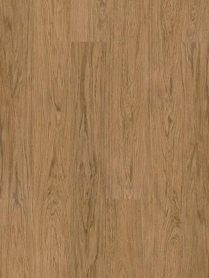 Wicanders Hydrocork Clic Vinyl-Designboden mit Korkdämmung Nature Oak Planke 1225 x 145 mm, 6 mm Stärke, 1,599 m² pro Paket, NS: 0,55 mm, Klick-Vinyl Bodenbelag jetzt noch günstiger mit persönlichem Angebot - jetzt zusammen mit Muster anfragen ab 20 m², HstNr: B5T5001 *** 1. Wahl Qualität! Lieferung ab € 600,- Warenwert ***