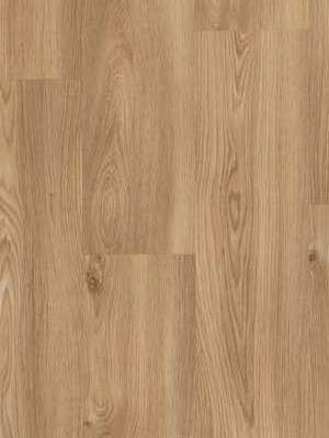 BerryAlloc Pure Click 55 Designboden Eiche Columbian 693M Wood Rigid-Core