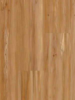 Wineo 400 Wood Click Vinyl Soul Apple Mellow Designboden zum Klicken