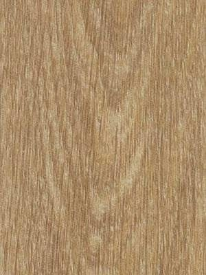 Forbo Allura Click 0.55 natural giant oak Designboden mit Klicksystem