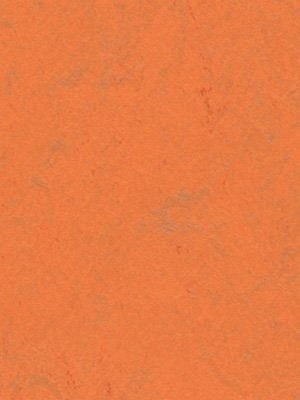 Forbo Linoleum Uni orange glow Marmoleum Concrete