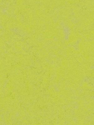 Forbo Linoleum Uni Marmoleum Concrete green glow, Rollenbreite 2,0 m, Stärke 2,5 mm, Linoleumbelag im Fachhandel --- Mindestbestellmenge 6 m² !!!  --- günstig online kaufen von Linoleumboden-Hersteller Forbo HstNr: 3742