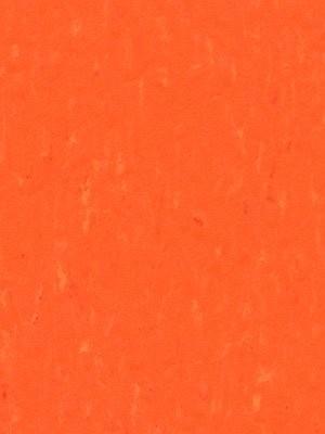 Forbo Linoleum Uni Marmoleum Piano Zinnia, Rollenbreite 2,0 m, Stärke 2,5 mm, Linoleumbelag im Fachhandel --- Mindestbestellmenge 6 m² !!!  --- günstig online kaufen von Linoleumboden-Hersteller Forbo HstNr: 3651