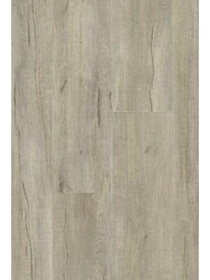 Gerflor Rigid 55 Lock Acoustic Click Designboden mit integrierter Trittschalldämmung Kilda Cashmere, Planke 225 x 1524 mm, 6 mm Stärke, 1,73 m² pro Paket, NS: 0,55 mm Vinyl-Design-Belag selbstliegend Preis günstig online kaufen und selbst verlegen von Rigid-Core-Design-Belag-Hersteller Gerflor HstNr: gr0018