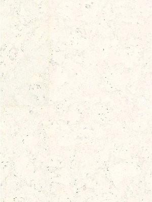 Wicanders cork Essence Korkboden Fertigparkett WRT Personality Moonlight Planke 905 x 295 mm, 10,5 mm Stärke, 2,136 m² pro Paket, günstig Kork-Bodenbelag online kaufen von Bodenbelag-Hersteller Wicanders HstNr: P801002 *** Lieferung ab € 500,- Warenwert ***