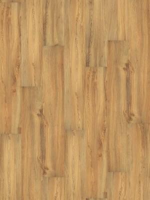 Wineo 1000 Purline PUR Bioboden Wood Planken zur vollflächigen Verklebung Canyon Oak Planke 1298 x 200 mm, 2,2 mm Stärke, 5,19 m² pro Paket Preis günstig Bio-Designboden kaufen von Design-Belag Hersteller Wineo HstNr: PL007R *** Bio-Designboden Lieferung ab 12 m² ***