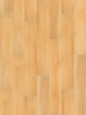 Wineo 1000 Purline PUR Bioboden Wood Planken zur vollflächigen Verklebung Summer Beech Planke 1298 x 200 mm, 2,2 mm Stärke, 5,19 m² pro Paket Preis günstig Bio-Designboden kaufen von Design-Belag Hersteller Wineo HstNr: PL047R *** Bio-Designboden Lieferung ab 12 m² ***