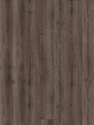 Wineo 1200 wood XL Purline Bioboden Call me Tilda Designboden zum Verklebung 1500 x 250 x 2,2 mm, pro Paket 6,25 m², NK 23/33 *** Bio-Designboden Lieferung ab 12 m² ***