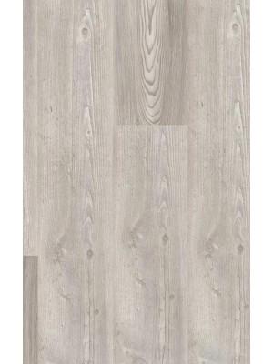 Wineo 1500 Wood L Purline PUR Bioboden Silver Pine Mixed Planke 1200 x 200 mm, 2,5 mm Stärke, 4,8 m² pro Paket, Verlegung mit Verklebung oder Unterlage SilentPremium, günstig online kaufen von Design-Belag Hersteller Wineo HstNr: PL078C sofort günstig direkt kaufen, HstNr.: PL078C, *** ACHUNG: Versand ab Mindestbestellmenge: 14 m² ***