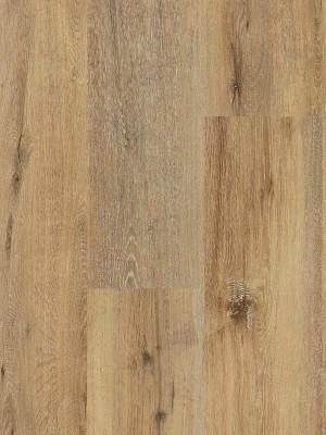 Wineo 400 Wood XL Click Vinyl-Designboden mit Klick-System Joy Oak Tender Planke 1507 x 235 mm, 4,5 mm Stärke, Oberfläche authentisch synchrongeprägt, 2,12 m² pro Paket, Nutzschicht 0,3 mm Designboden sofort günstig direkt kaufen *** ACHUNG: Versand ab Mindestbestellmenge 12m² *** von Design-Belag Hersteller Wineo HstNr: DLC00126