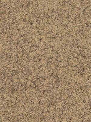 Fabromont Jamila Kugelgarn Teppichboden Pisa Rollenbreite 200 cm, Mindestbestellmenge 10 lfm, günstig Objekt-Teppichboden online kaufen von Bodenbelag-Hersteller Fabromont HstNr: j556 *** Mindestbestellmenge 12 m² ***