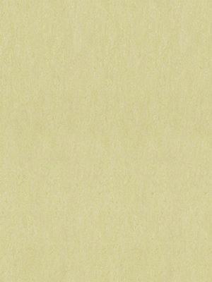 Forbo Marmoleum Linoleum Fresco Naturboden green wellnes Stärke 2,5 mm, Rollenbreite 2 m, Linoleumbelag --- Mindestbestellmenge 6 m² !!!  --- günstig online kaufen von Naturboden-Hersteller Forbo HstNr: mf3881