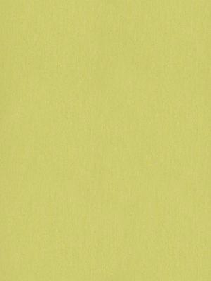 Forbo Marmoleum Linoleum spring buds Fresco Naturboden