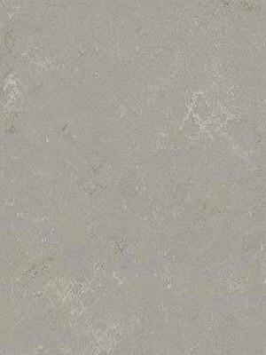 Forbo Marmoleum Modular Linoleum Pluto Shade