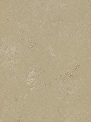 Forbo Marmoleum Modular Linoleum Shade Sandy cost, Fliese 75 x 50 cm, 2,5 mm Stärke, 3 m² pro Paket, Linoleum-Fliesen günstig online kaufen von Naturboden-Hersteller Forbo HstNr: mmt3720