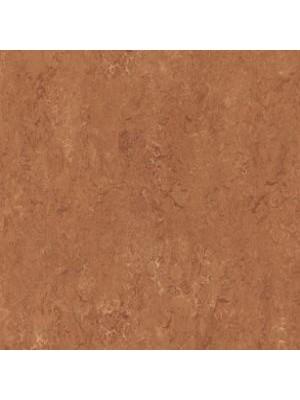 Forbo Marmoleum Linoleum Real Naturboden rust Stärke 2,5 mm, Rollenbreite 2 m, Linoleumbelag --- Mindestbestellmenge 6 m² !!!  --- günstig online kaufen von Naturboden-Hersteller Forbo HstNr: mr2767
