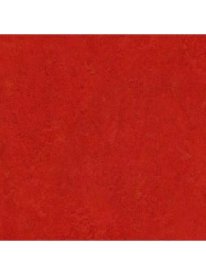 Forbo Marmoleum Linoleum scarlet Real Naturboden