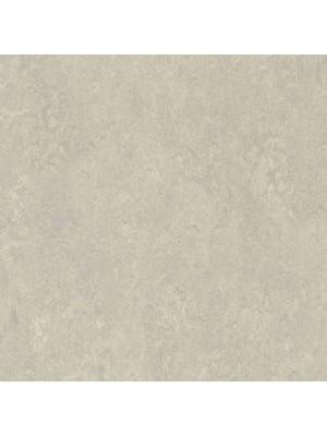 Forbo Marmoleum Linoleum Real Naturboden concrete Stärke 2,5 mm, Rollenbreite 2 m, Linoleumbelag günstig online kaufen von Naturboden-Hersteller Forbo HstNr: mr3136