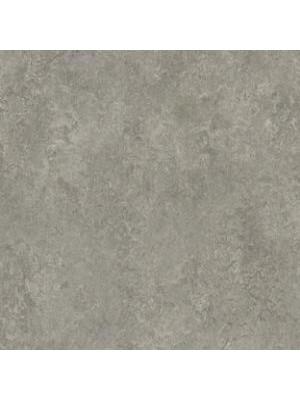 Forbo Marmoleum Linoleum serene grey Real Naturboden