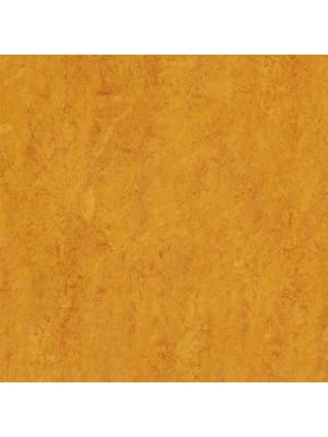 Forbo Marmoleum Linoleum Real Naturboden marigold Stärke 2,5 mm, Rollenbreite 2 m, Linoleumbelag --- Mindestbestellmenge 6 m² !!!  --- günstig online kaufen von Naturboden-Hersteller Forbo HstNr: mr3226