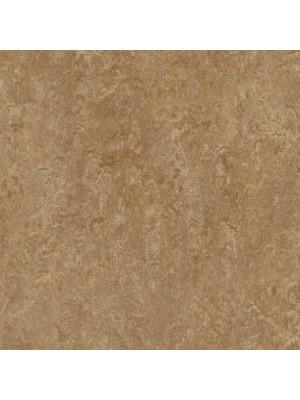Forbo Marmoleum Linoleum Real Naturboden shitake Stärke 2,5 mm, Rollenbreite 2 m, Linoleumbelag --- Mindestbestellmenge 6 m² !!!  --- günstig online kaufen von Naturboden-Hersteller Forbo HstNr: mr3233