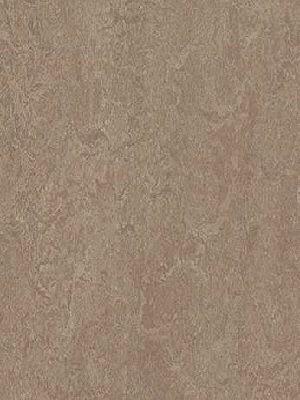 Forbo Marmoleum Modular Linoleum Marble Shrike, Fliese 50 x 25 cm, 2,5 mm Stärke, 5 m² pro Paket, Linoleum-Fliesen günstig online kaufen von Naturboden-Hersteller Forbo HstNr: mt3246