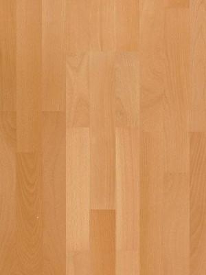 Parador Basic 11-5 Parkett Buche natur Fertig-Parkett in Schiffsboden 3-Stab, matt lackiert