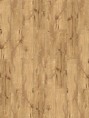 Parador Trendtime 1 Laminat hochwertig mit 4-V-Fuge Eiche Century natur Planke 1285 x 158 mm, 8 mm Stärke, 2,03 m² pro Paket, günstig Laminat online kaufen von Laminatboden-Hersteller Parador HstNr: 1601432 *** Lieferung ab 15 m² bzw. 350 EUR Warenwert***