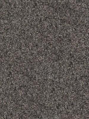 Fabromont Symphonie Kugelgarn Teppichboden Mergel Rollenbreite 200 cm, Mindestbestellmenge 10 lfm, günstig Objekt-Teppichboden online kaufen von Bodenbelag-Hersteller Fabromont HstNr: s747