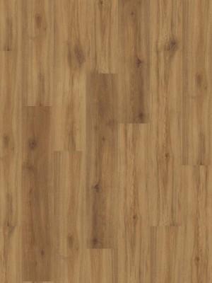 HARO DISANO Saphir Rigid-Klick-Boden LA 4VM Eiche Provence natur auth. SPC Rigid Designboden 4,5 x 1282 x 235 mm, mit authentischer 4V-Fuge, sofort günstig online kaufen, *** Lieferung ab 15 m² bzw. 350 € Warenwert ***, HstNr.: 540070