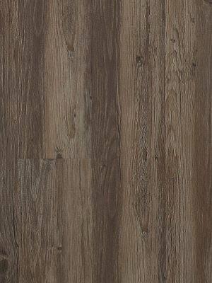 JAB Adramaq Click Vinyl-Designboden mit Klicksystem Meereiche Planke 180,8 x 1210,0 mm, 5 mm Stärke, 2,18 m² pro Paket, Nutzschicht 0,55 mm Klick-Vinyl-Design-Belag Preis günstig online kaufen und selbst verlegen von Bodenbelag-Hersteller JAB Adramaq HstNr: aCL1805 *** Lieferung ab 15 m² ***