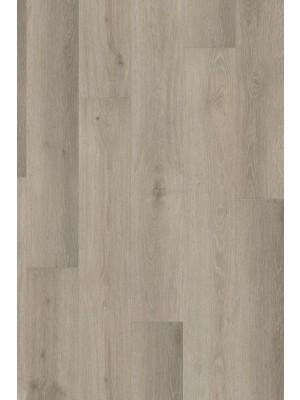 Adramaq Rigid Click+ Designboden Three salzeiche 5,5 mm Landhausdiele  1210 x 172 x 5,5 mm günstig online kaufen, HstNr.: A-RCL99988