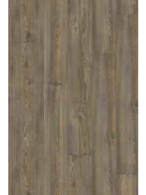 Adramaq Two Klebe-Vinyl Designboden italienische pinie 2,5 mm Landhausdiele  1219,2 x 184,2 x 2,5 mm zur Veklebung oder mit Verlegenterlage SilentPremium HstNr.: 10020218, günstig online kaufen, HstNr.: A-89991