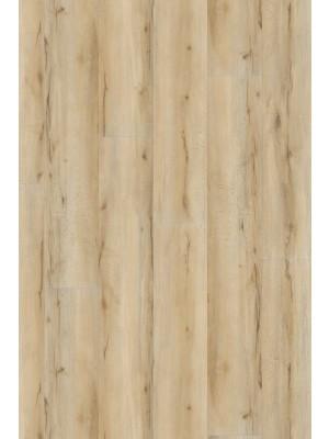 Adramaq Two Klick-Vinyl Designboden kernbuche 5 mm Landhausdiele  1212,9 x 222,3 x 5 mm günstig online kaufen, HstNr.: A-CL89984 *** Lieferung ab 15 m² ***
