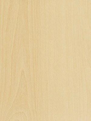 Amtico Access Vinyl Designboden Simple Beech Wood selbstliegend, Kanten gefast