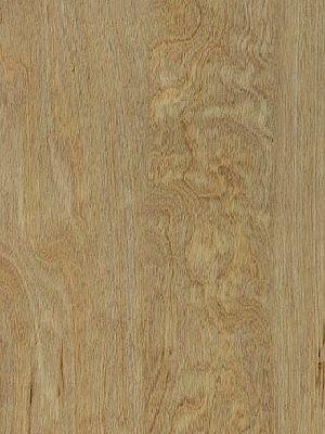 Amtico First Vinyl-Designboden Wood Designboden, Kanten gefast Bleached Elm Planke 184 x 1219 mm, Stärke 2 mm, 2,0 m² pro Paket, Verlegung mit Verklebung oder Verlegeunterlage Silent-Premium HstNr.:10020218, Preis günstig online kaufen von Bodenbelag-Hersteller Amtico HstNr: SF3W2516 *** Lieferung ab 15m² ***