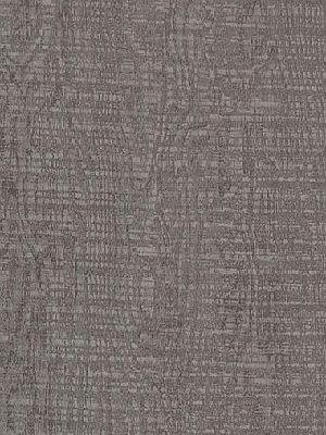 Amtico Signature Vinyl Designboden Cirrus Shadow Wood Standard