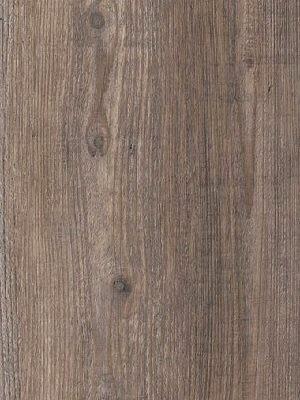 Amtico Signature Vinyl Designboden Harbour Pine Wood Standard