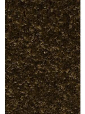AW Carpet Gaia Equator Teppichboden 44 Luxus Frisé aus Polyester 400/500cm NK: 23 günstig Teppich-Bodenbelag online kaufen, HstNr.: 5414956465762