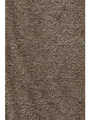 AW Carpet Sensualité Séduction Teppichboden 49 Luxus Saxony superweich 400/500cm NK: 32 günstig Teppich-Bodenbelag online kaufen, HstNr.: 5414956170024
