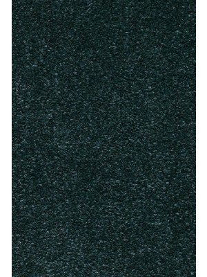 AW Carpet Velvet Oréade Teppichboden 74 Luxus Velours samtig-weich 400/500cm NK: 23/31 günstig Teppich-Bodenbelag online kaufen, HstNr.: 5414956441957