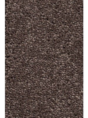 AW Carpet Vivendi Punch Teppichboden 44 Luxus Frisé besonders pflegeleicht 400/500cm NK: 23/31 günstig Teppich-Bodenbelag online kaufen, HstNr.: 5414956443586