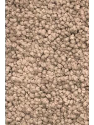 AW Carpet Vivendi Vigour Teppichboden 44 Luxus Frisé besonders pflegeleicht 400/500cm NK: 32 günstig Teppich-Bodenbelag online kaufen, HstNr.: 5414956422727