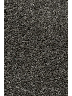 AW Carpet Vivendi Vigour Teppichboden 95 Luxus Frisé besonders pflegeleicht 400/500cm NK: 32 günstig Teppich-Bodenbelag online kaufen, HstNr.: 5414956422956