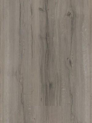 BerryAlloc Style 55 DreamClick Cracked Ash Grey Klick-Designboden 1336 x 204 x 5 mm, 2,164 m² pro Pack / 8 Stück sofort günstig direkt kaufen, HstNr.: 60001568 *** ACHTUNG: Versand ab Bestellmenge von 12 m2 ***