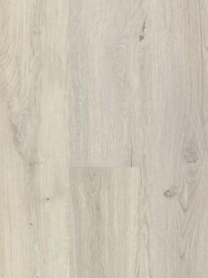 BerryAlloc Style DreamClick 55  Vivid Light Klick-Designboden 1326 x 204 x 5 mm, 2,164 m² pro Pack / 8 Stück günstig online kaufen, HstNr.: 60001569