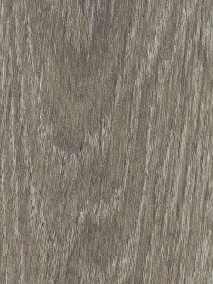 Forbo Allura all-in-one grey giant oak Flex 1.0 Loose Lay Designboden selbstliegend