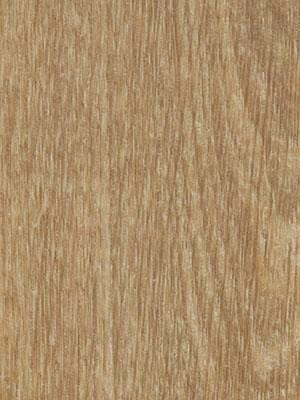 Forbo Allura all-in-one Click-Designboden 0.55 natural giant oak